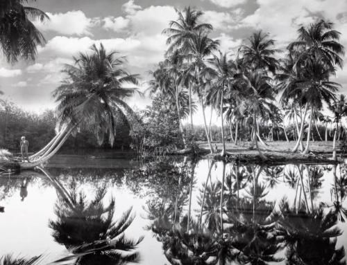 Fotos de Puerto Rico en 1924